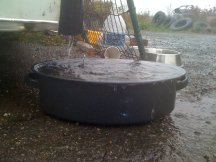 collecting rainwater in a pan