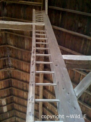 ancient ladder in barn rising up to the ceiling